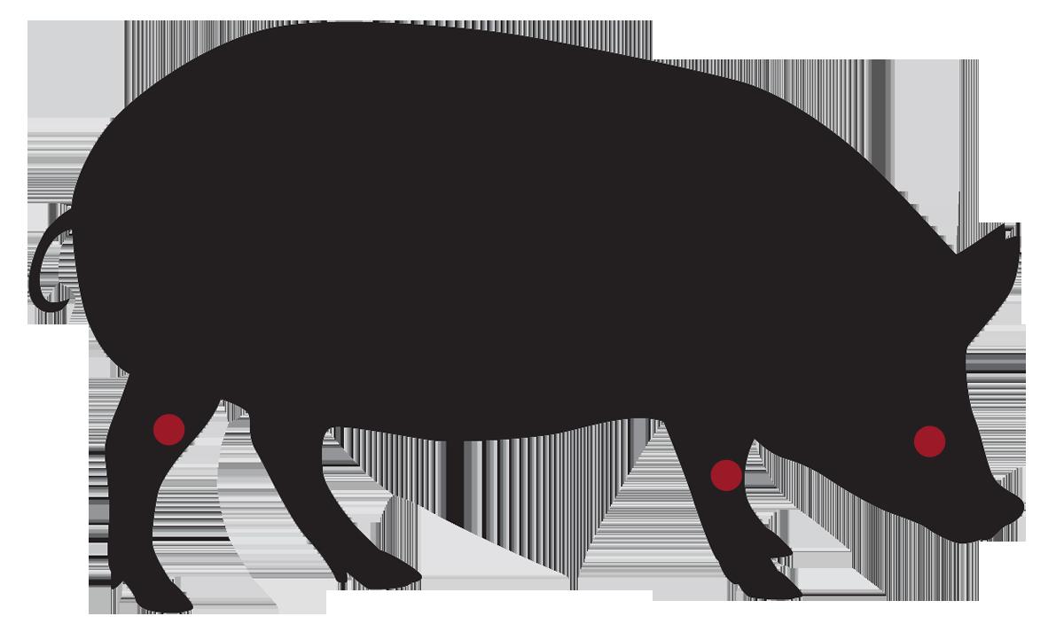 locatie: Erwtensoep vleespakket