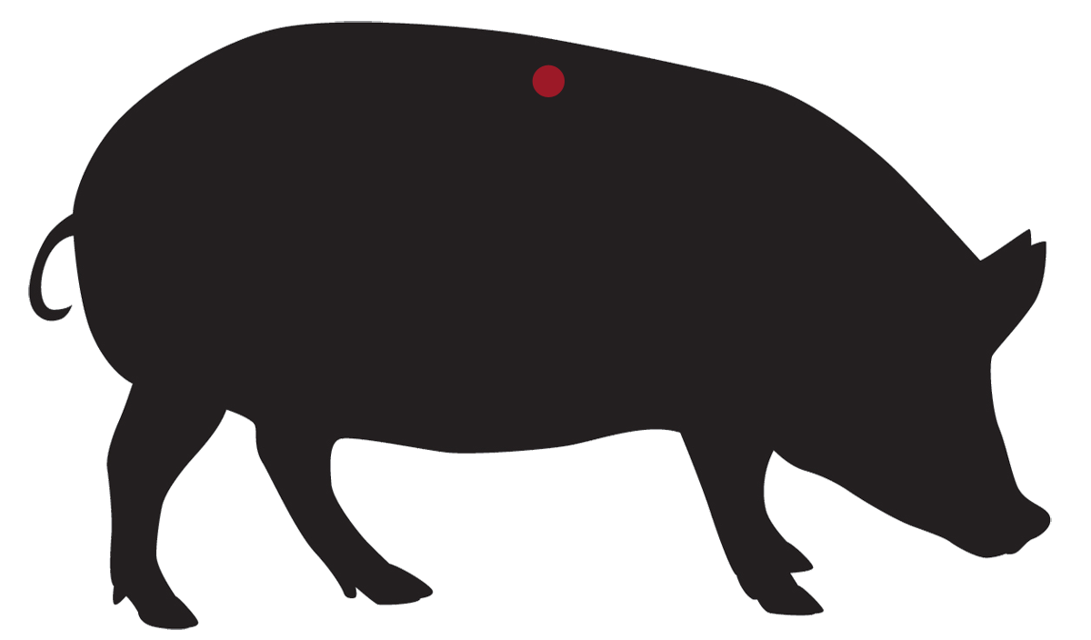 locatie: Haasfilet met vet