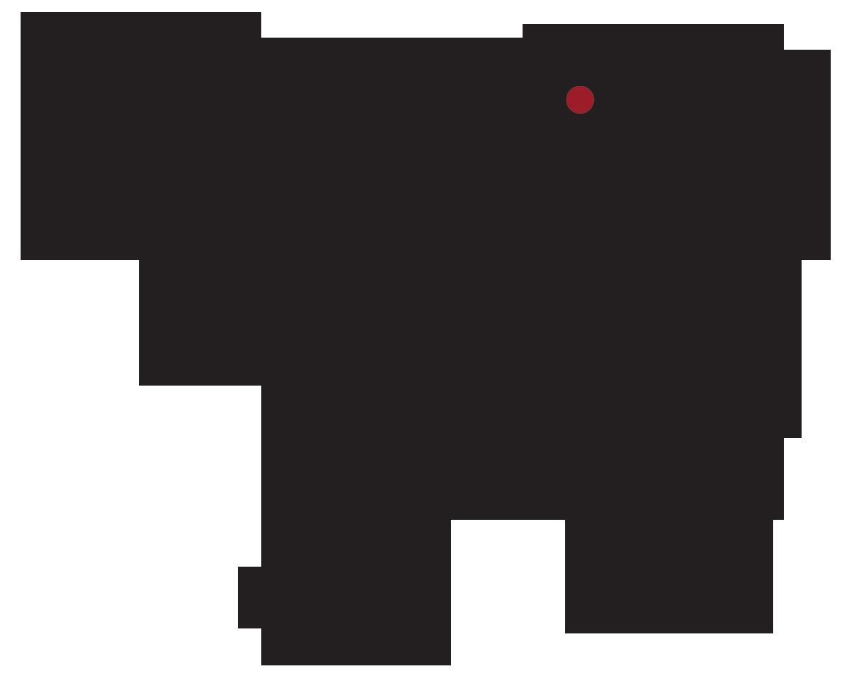 locatie: Kalfsnier met vet