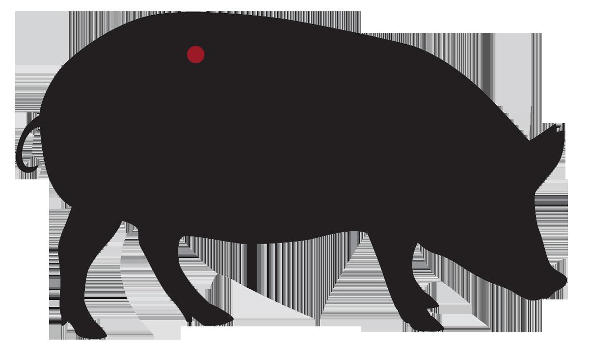 locatie: Lange varkenshaas