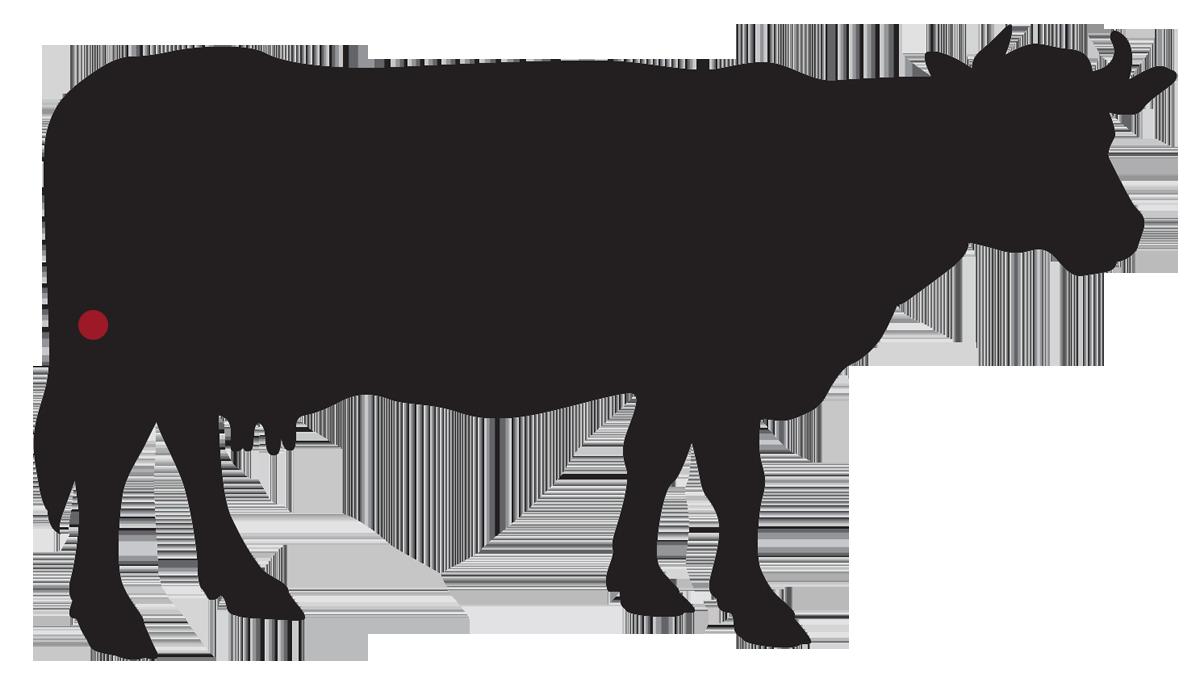 locatie: Peeseind biefstuk