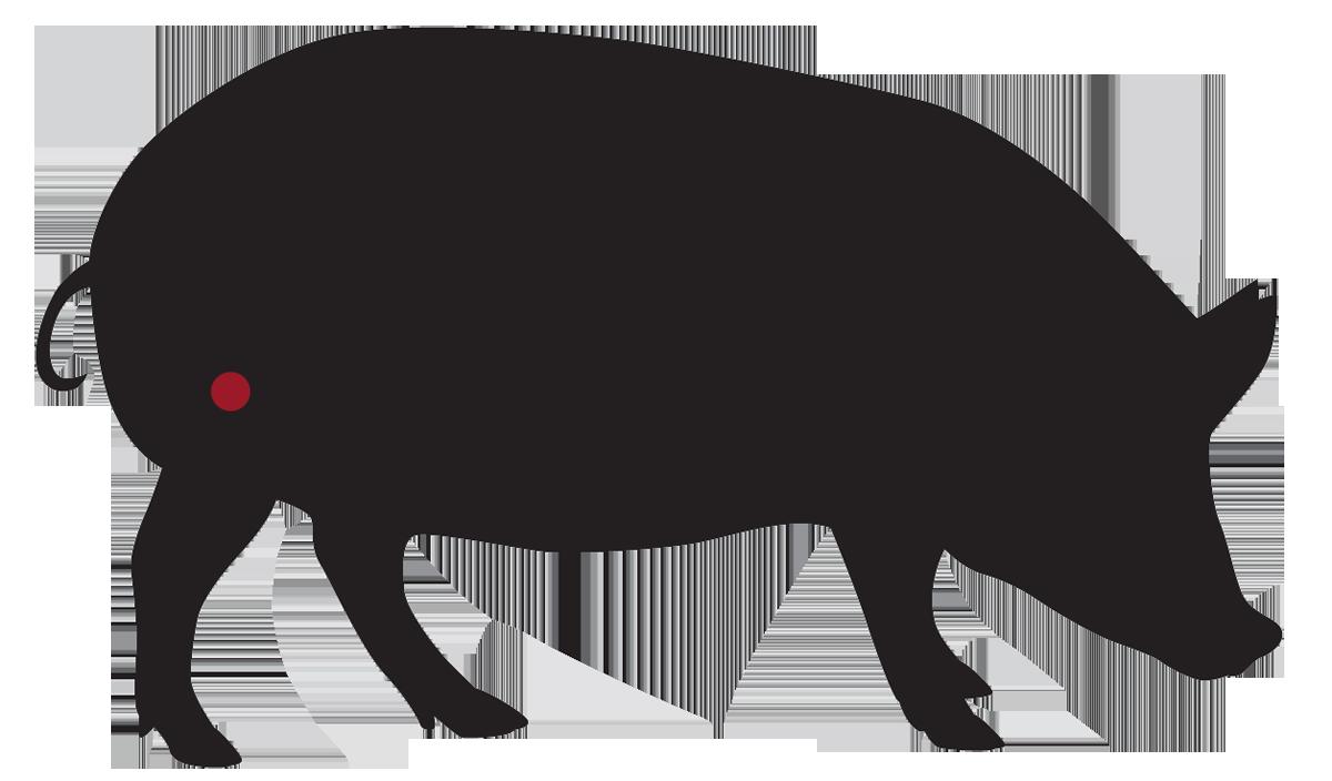 locatie: Schnitzel van het varken