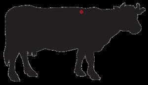 locatie: Tomahawk Steak Dry-Aged