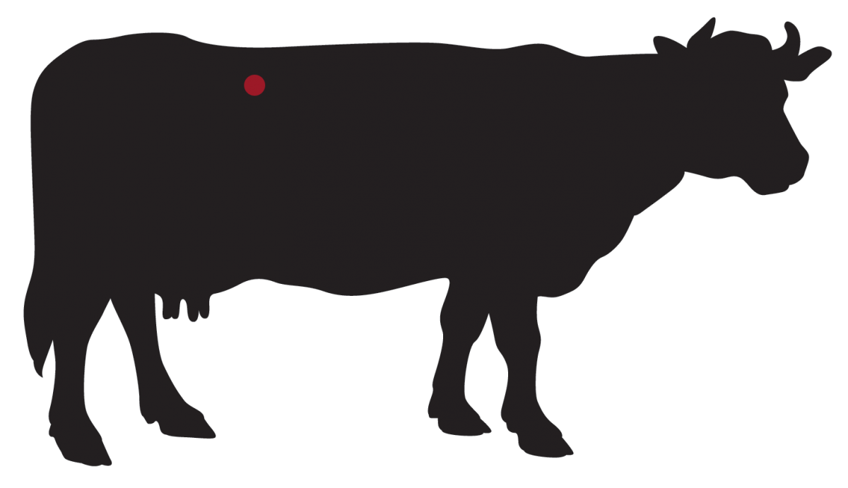 locatie: Porterhouse steak Dry-Aged